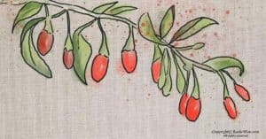 How to Grow Goji Berries from Cuttings: An Easy Step-by-Step Guide