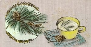 Foraging Pine Needles: What to Do With Them & How to Make Pine Needle Tea