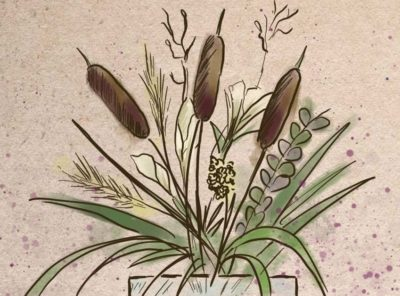 How to Preserve Cattails and 3 Easy Ways to Make Arrangements