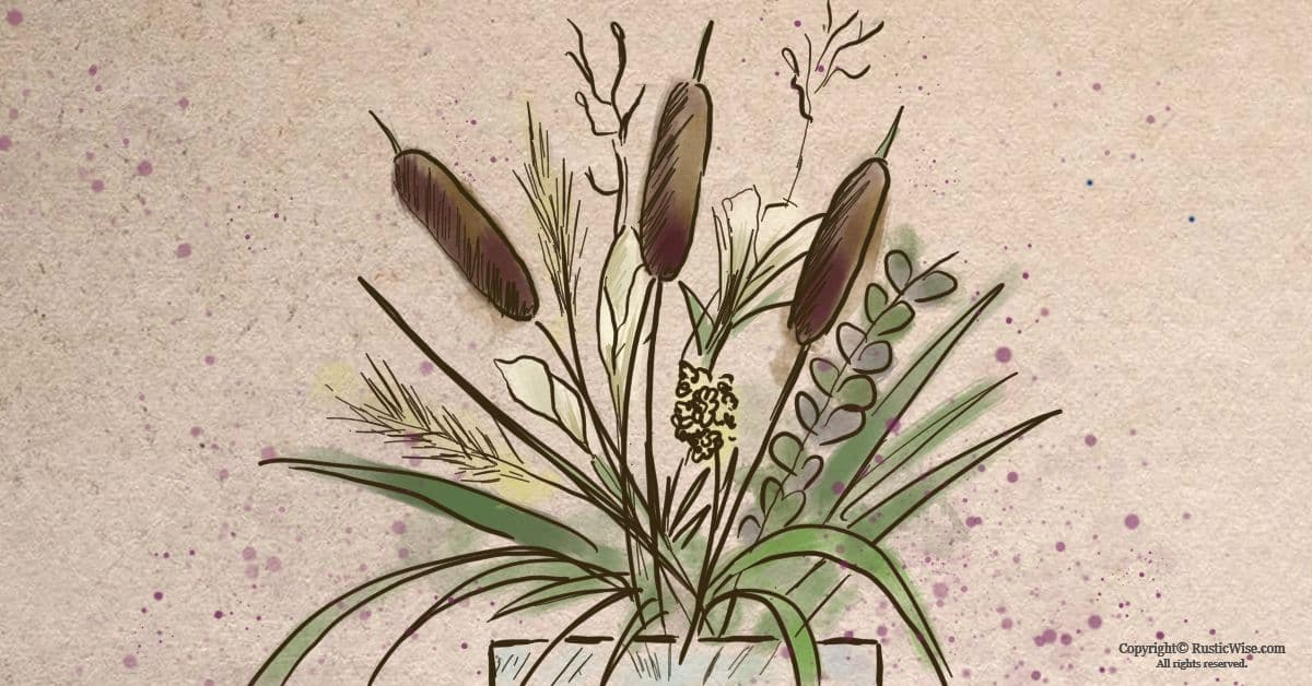 RusticWise_HowToPreserveCattails