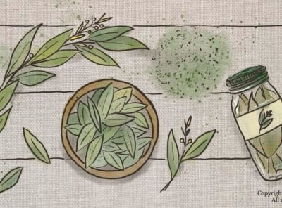 The Shelf Life of Bay Leaves and Why You're Probably Storing Them Improperly
