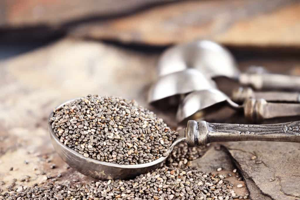 YayImages GrowChiaSprouts chia seeds