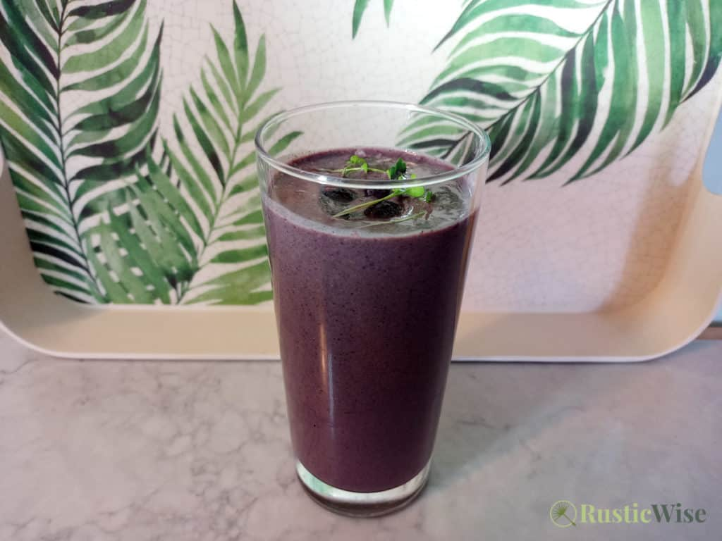 RusticWise_MicrogreenSmoothieRecipes_berry