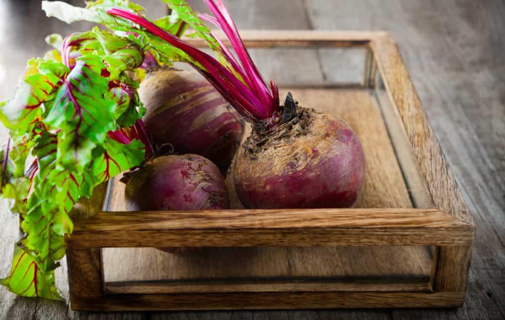 YayImages_BeetMicrogreensBenefits_raw-organic-beets
