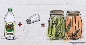 Does Pickling Destroy Nutrients? Here's What You Need To Know