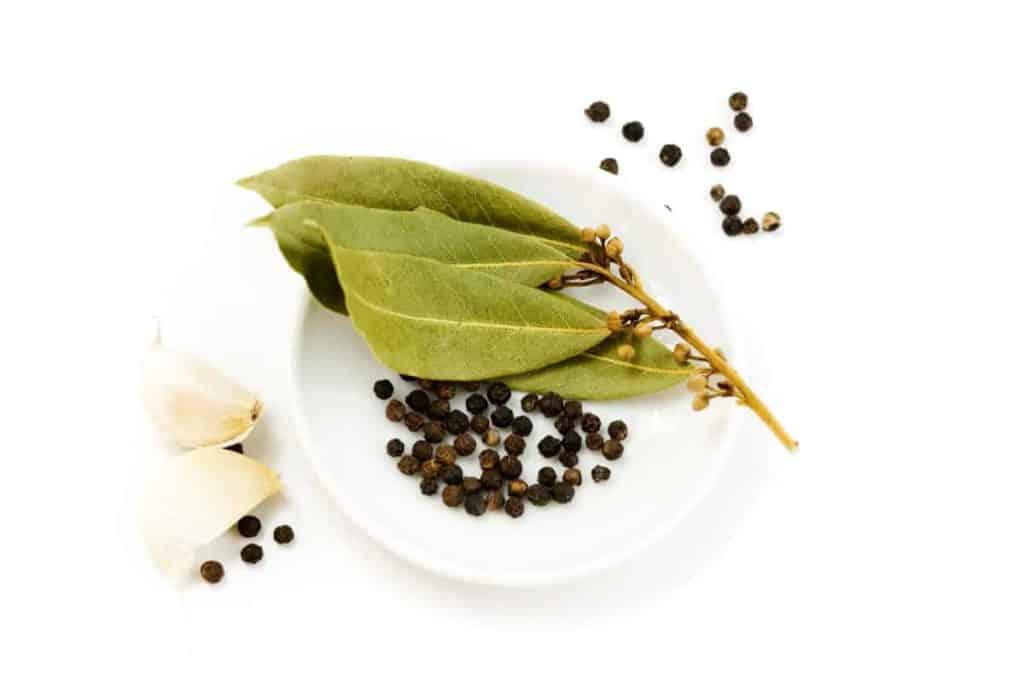 YayImage_WhatIsThePicklingProcess_garlic-peppercorn-and-bay-leaf