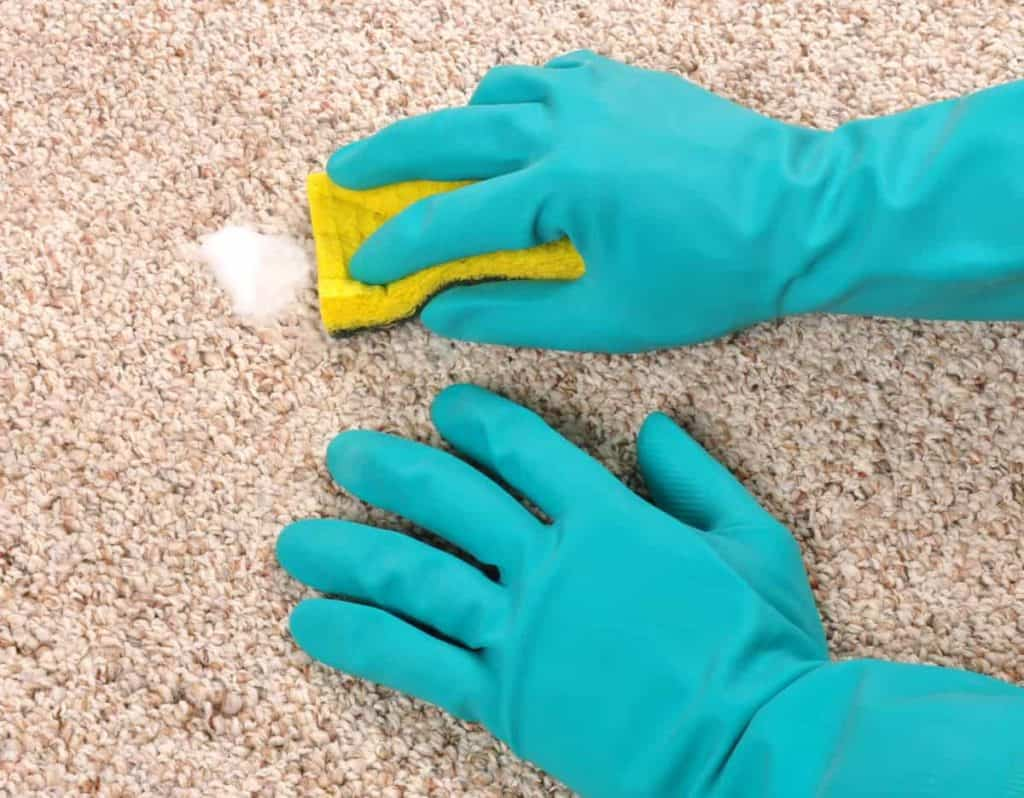 YayImages_HowToDeepCleanCarpetWithoutAMachine_cleaning