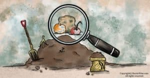 Can You Compost Moldy Food? Tips for Handling Moldy Foods Safely