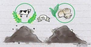 The Dirt on Cow Manure vs. Mushroom Compost