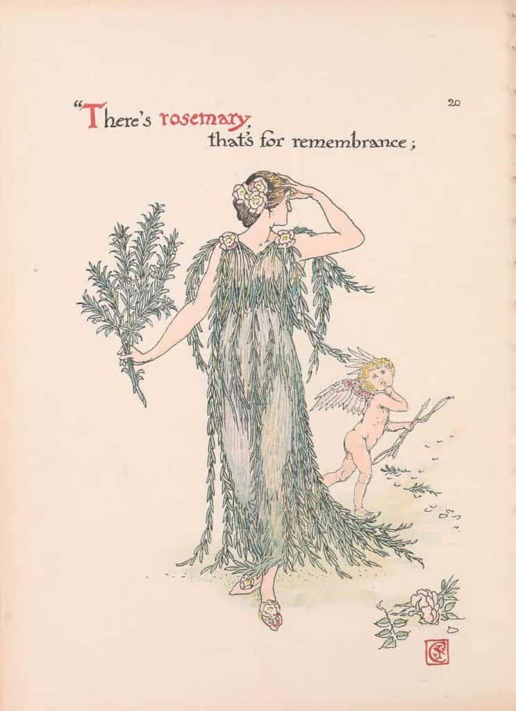 Flickr-HistoryOfHerbs-BHL-Rosemary