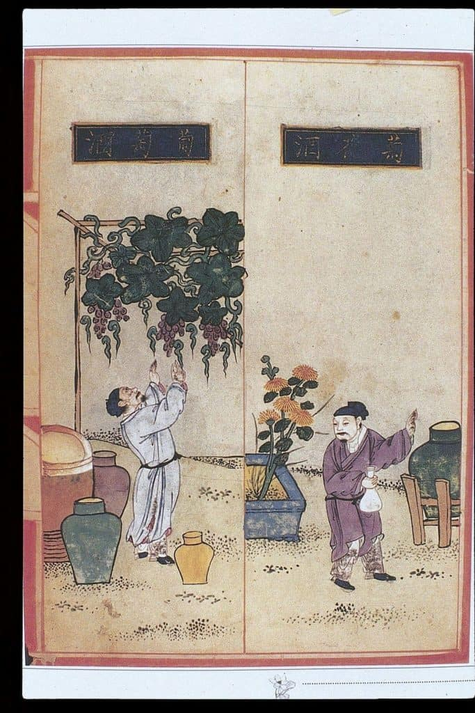 HistoryOfHerbs_1024px-Chinese_Materia_Dietetica,_Ming;_Alcoholic_beverages_Wellcome_L0039397