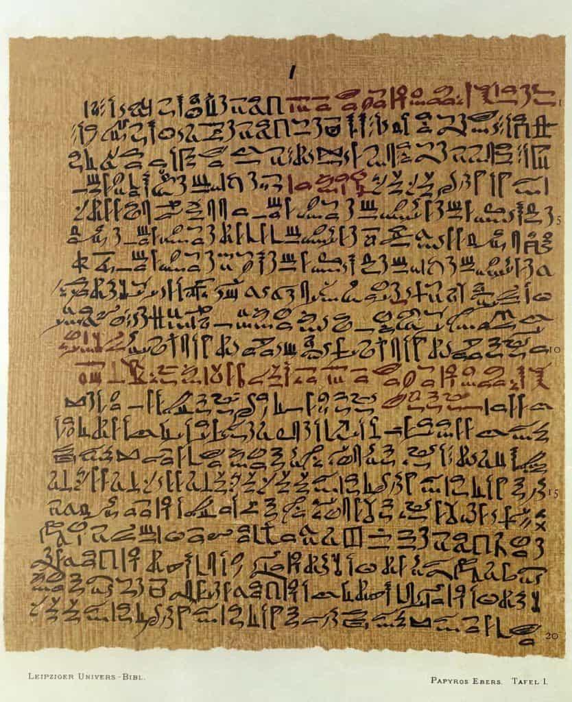 HistoryOfHerbs_1024px-G._Ebers_(ed.),_Papyros_Ebers,_1875_Wellcome_L0016592