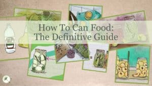 How To Can Food: The Definitive Guide